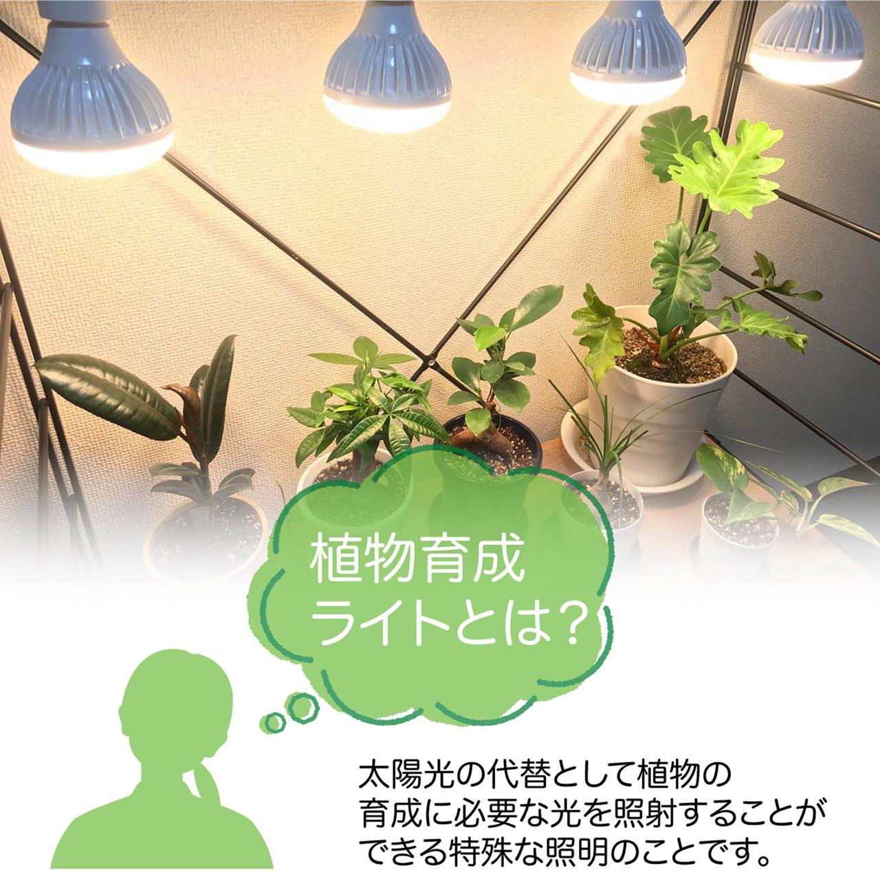太陽光の代替として植物の育成に必要な光を照射することができる特殊な照明のことです。